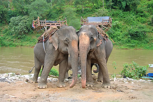 central thailand 6 day tour CT06