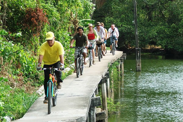 Cycle tour of Bangkok