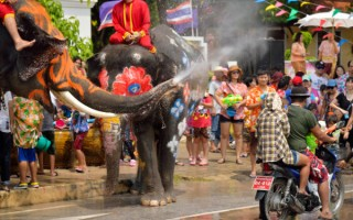 songkran thai new year water festival lephants