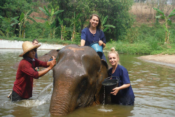 baan chang elephant camp mahout day bathing