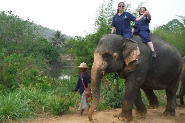baanchang bareback elephant riding chiang mai
